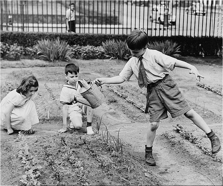 The History Place   Best Of Photo Of The Week: Pursuits Of Childhood: Victory  Garden